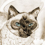Memorial portrait of a Siamese cat. This was a bonus coloring.