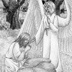 Luke 22:41-44. Agony of the Son of Man. For http://christschurch.info/